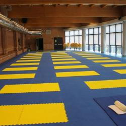 Esami Professionali di Shiatsu e Gare Shiatsu New Sport 2013